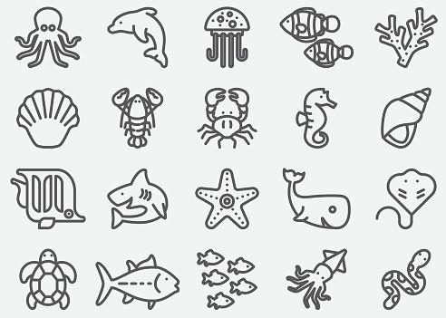 Ocean Animals  Line Icons