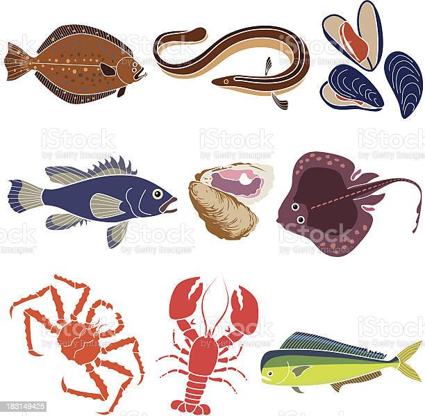 Ocean Fishes And Sea Creatures Stock Illustration - Download Image Now
