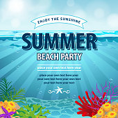 Summer holidays ocean floor background included coral, mollusk and starfish.