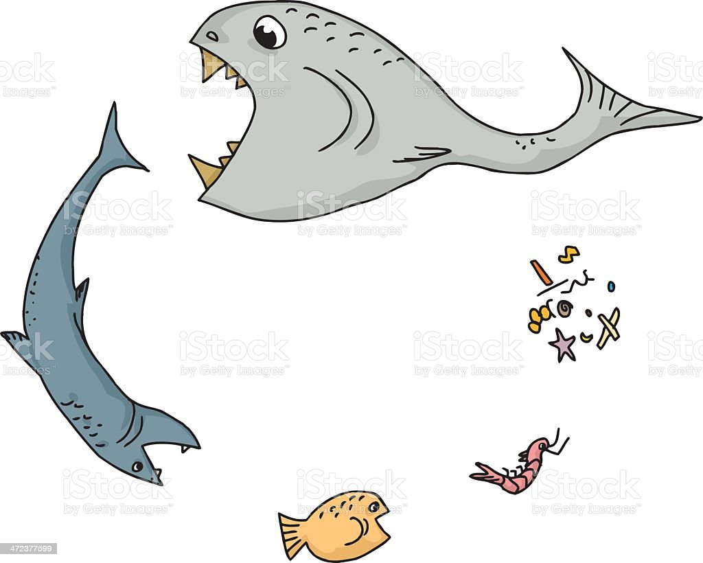 Ocean Food Chain Cartoon Stock Illustration Download Image Now