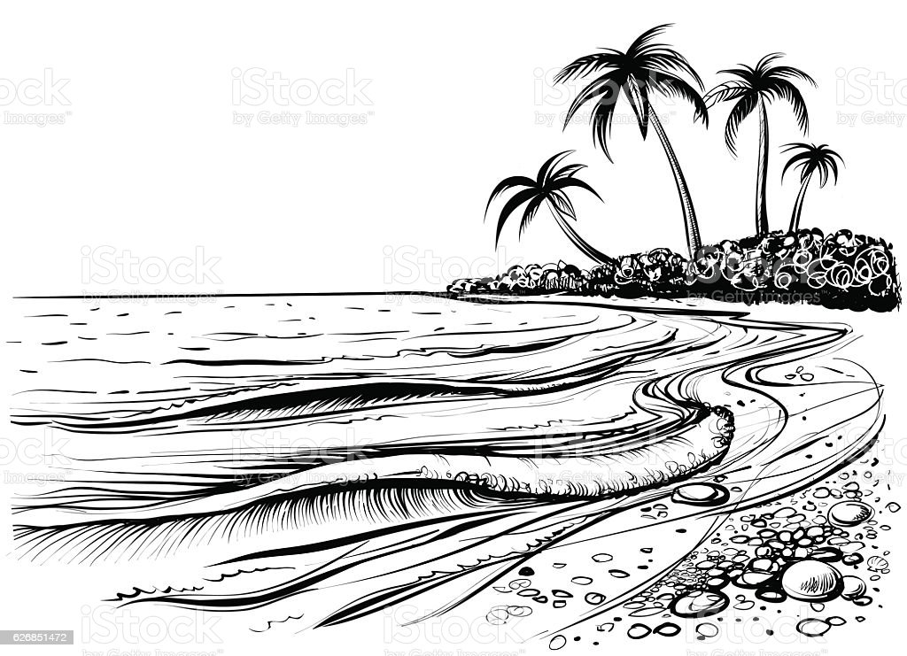 Ocean or sea beach with waves and palms, drawing. vector art illustration