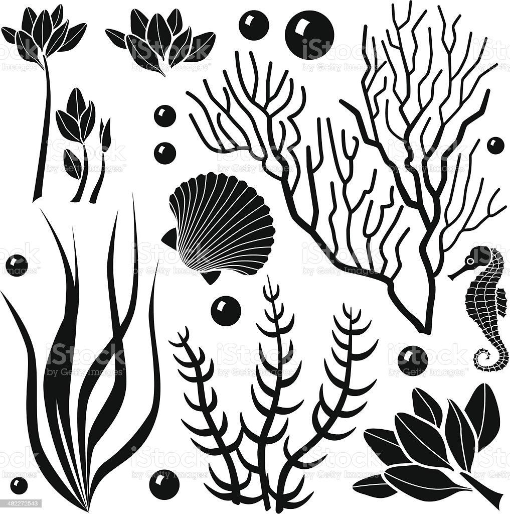 ocean plants stock vector art 482272543 istock