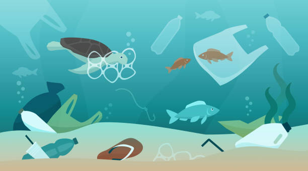 Ocean pollution and its impact on ecosystem vector art illustration