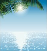 Ocean Sun and Palmleaves. Layered EPS 10 file with transparencies in the sun and shine in the reflections on the water. Included: large JPG (43cm high, 300 dpi)