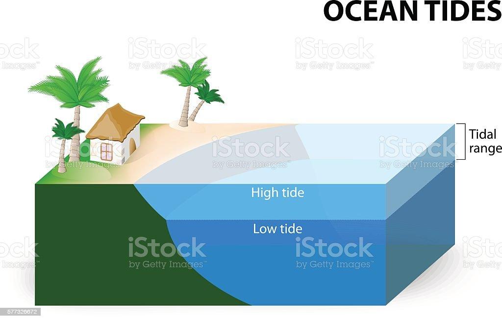 Ocean Tides vector art illustration