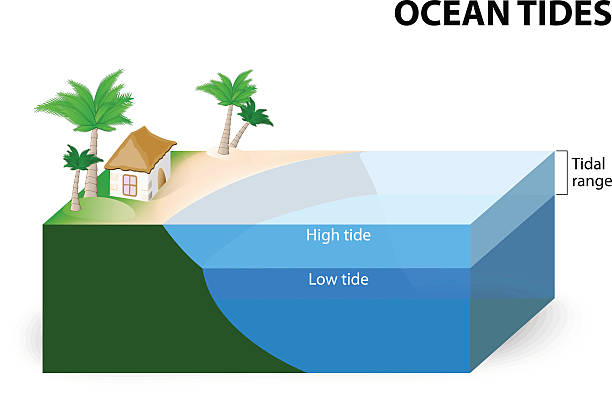 Ocean Tides Ocean Tides. Tidal Range. The tidal range is the difference in sea level between low tide and high tide tide stock illustrations