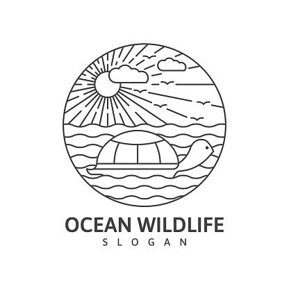 Ocean wildlife turtle monoline outdoor nature vector
