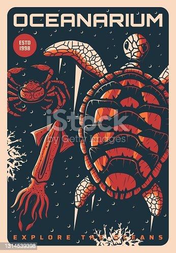 istock Oceanarium, sea and ocean underwater animals world 1314539398