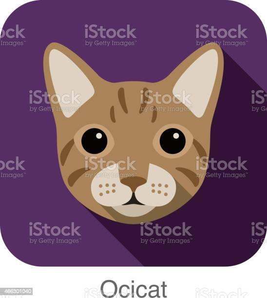 Ocicat cat cat breed face cartoon flat icon design vector id466301040?b=1&k=6&m=466301040&s=612x612&h=g tp31olsojc6rhp1gdc8m4y7wjwnj3yt1t nbj0bgg=