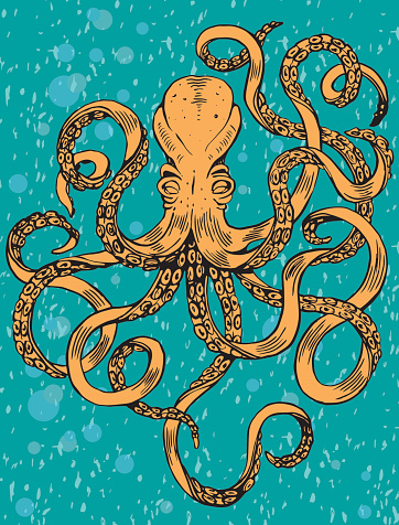 Octopus and water texture. Hand Drawn Sea Life Illustration.