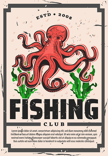 Octopus fishing club, seafood fisher big catch