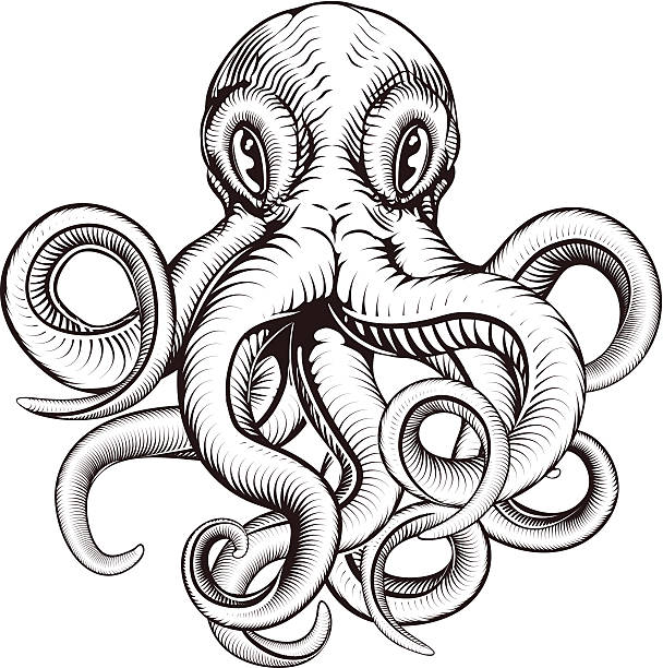 Octopus illustration vector art illustration