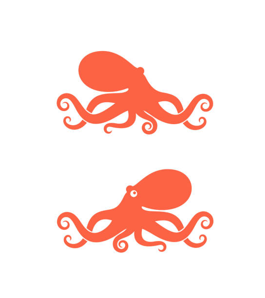 octopus logo. isolated octopus on white background - octopus stock illustrations