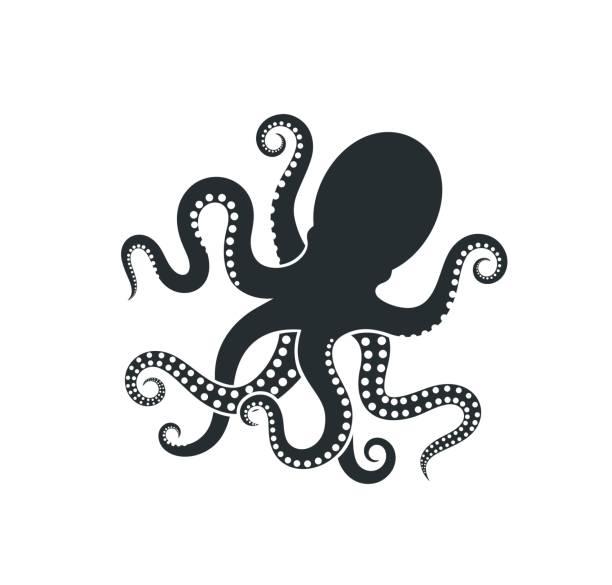 octopus-logo. isolierter oktopus auf weißem hintergrund - krake cephalopode stock-grafiken, -clipart, -cartoons und -symbole