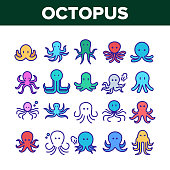 Octopus Ocean Mollusk Collection Icons Set Vector. Octopus Marine Sea Clam With Tentacles, Swimming Aquatic Invertebrate Concept Linear Pictograms. Color Contour Illustrations