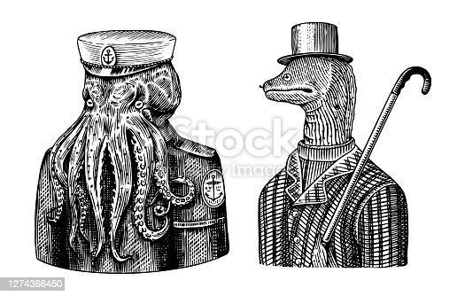 Octopus sailor. Sea captain and Muraena eels. Fashion Animal character. Nautical Seaman or nautical mariner. Hand drawn sketch. Vector engraved illustration for emblem, label and tattoo or T-shirts