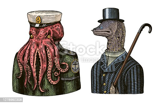 Octopus sailor. Sea captain and Muraena eels. Fashion Animal character. Nautical Seaman or nautical mariner. Hand drawn sketch. Vector engraved illustration for logo, label and tattoo or T-shirts