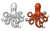 Octopus. Vector color engraving vintage illustrations. Isolated on white background. Hand drawn design element for label and poster