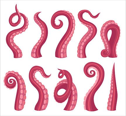 Octopus tentacles cartoon color vector illustrations set