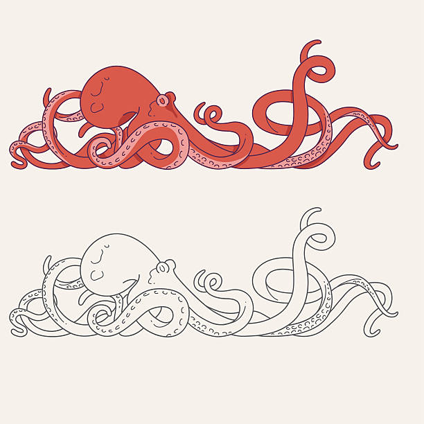 octopus tentacles - octopus stock illustrations