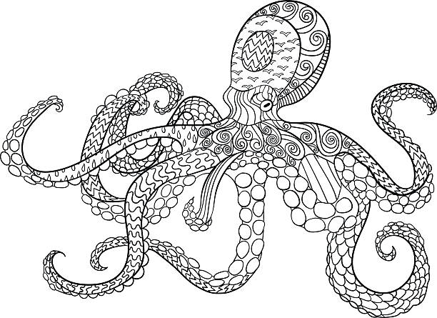 Octopus with high details. Octopus with high details. Adult antistress coloring page. Black white hand drawn doodle oceanic animal for art therapy. Sketch for tattoo, poster, print, t-shirt instyle. Vector. animal markings stock illustrations