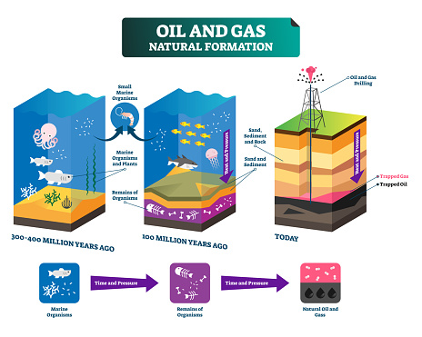 Oil and gas natural formation labeled vector illustration explain scheme.