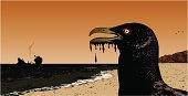 oil spill with seagull