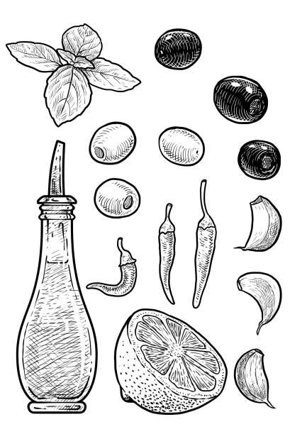 öl, essig flasche illustration, zeichnung, gravur, tinte, strichzeichnungen, vektor - dressing stock-grafiken, -clipart, -cartoons und -symbole