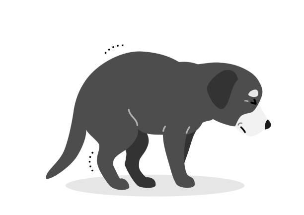 立ち難い老犬 ベクターアートイラスト