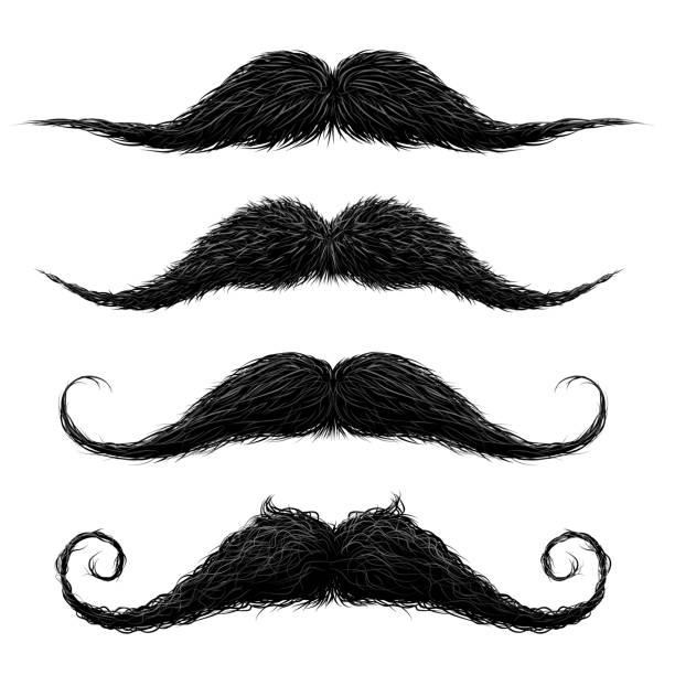 ilustrações, clipart, desenhos animados e ícones de moda antiga lábio superior longo cera preparado e aparado bigode falso definir ilustração vetorial abstrato - bigode
