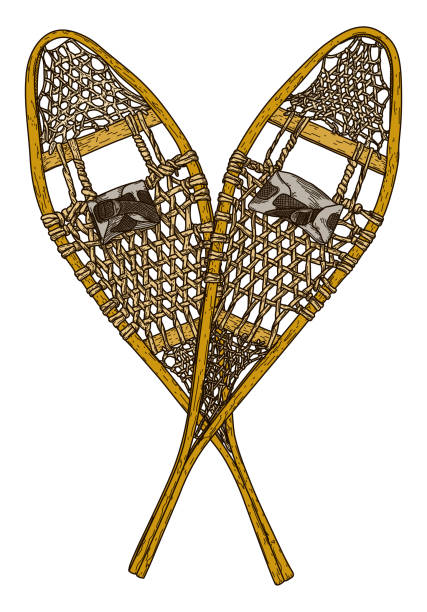 Old Fashioned Snowshoes vector art illustration