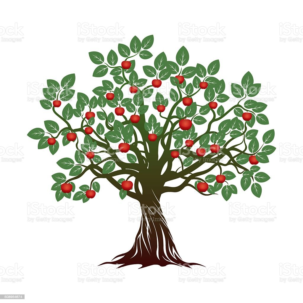 Old Green Tree And Roots And Red Apples Vector ...