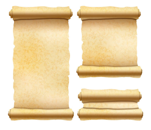 Old textured papyrus scrolls different shapes isolated on white Set of old textured papyrus scrolls different shapes isolated on white ancient stock illustrations