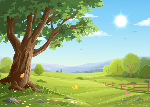 Old Tree In Idyllic Landscape