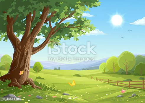 Vector illustration of a beautiful rural landscape in summer or spring with a big old tree in the foreground and bushes, a fence, hills, green meadows and a blue sunny sky in the background. Illustration with space for text.