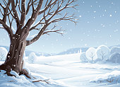 An old tree in a beautiful cloudy winter landscape with snowy trees, hills and mountains in the background. The sky is gray and it's snowing. Vector illustration with space for text.