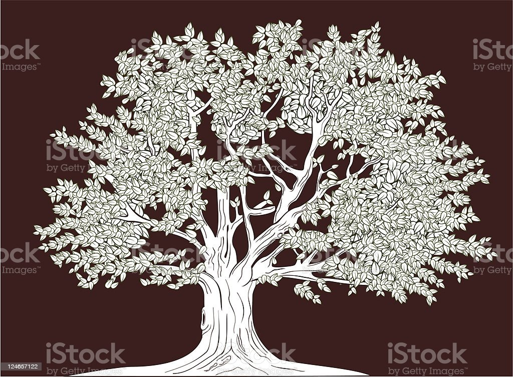 Old tree royalty-free stock vector art