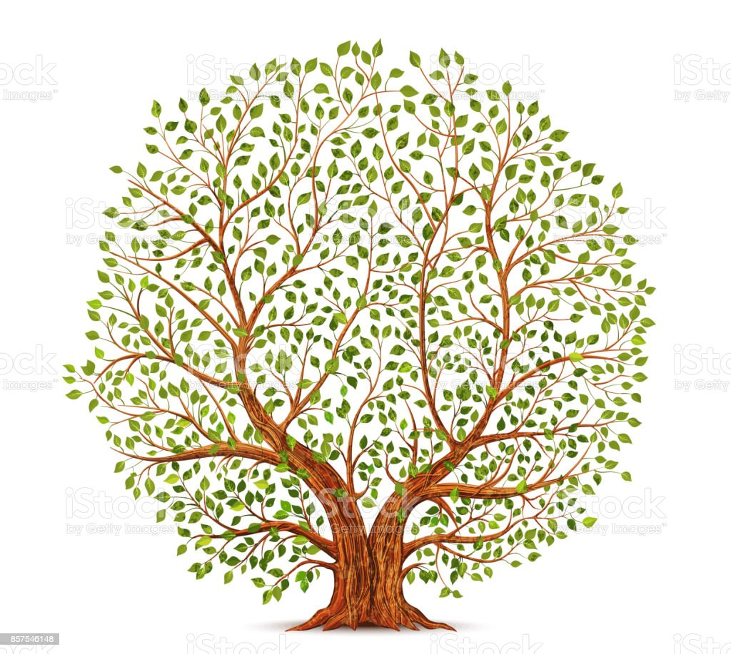 Old tree vector illustration royalty-free old tree vector illustration stock illustration - download image now