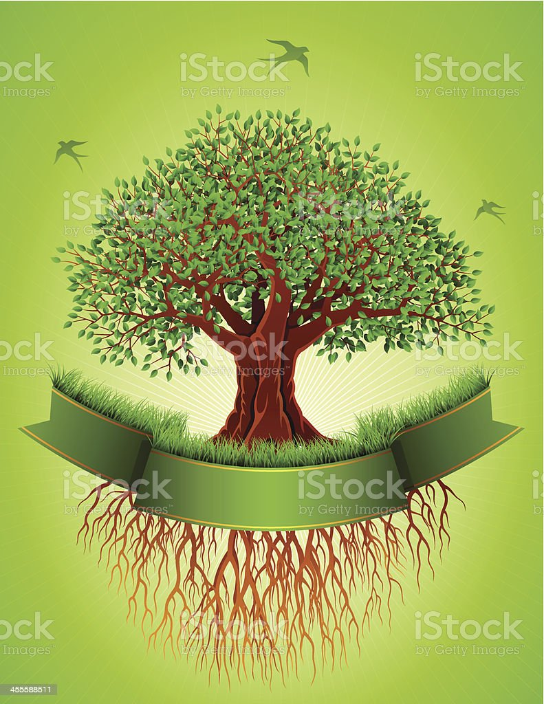 Old Tree with Roots and Banner royalty-free stock vector art