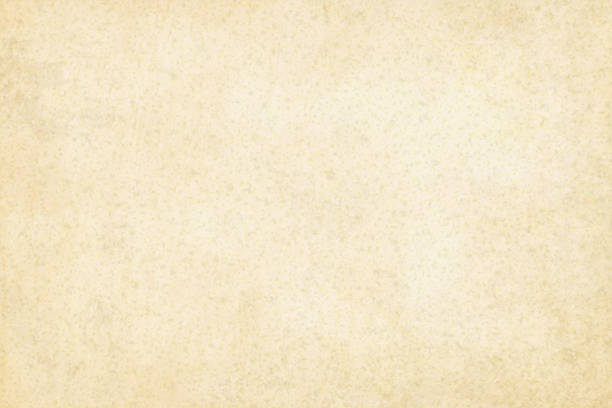 ilustrações de stock, clip art, desenhos animados e ícones de old yellowish cream beige colored grainy effect wooden, wall texture grunge vector background- horizontal - illustration - cereal