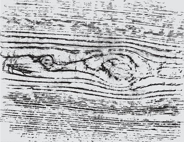 ilustrações, clipart, desenhos animados e ícones de oldy moldy madeira - textura de madeira