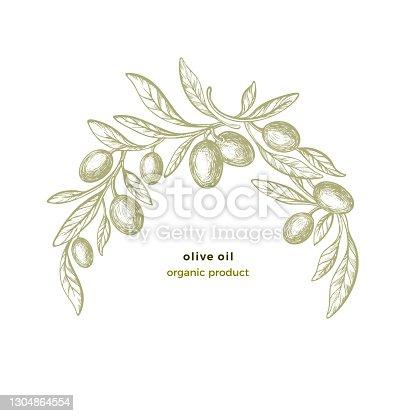 istock Olive arc pattern. Vector circle frame. Bio food 1304864554