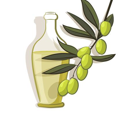 olive branch background