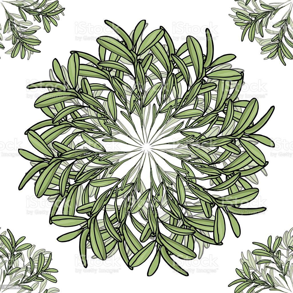 Картинки по запросу оливковая ветвь