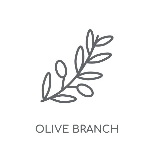 Olive Branch linear icon. Modern outline Olive Branch logo concept on white background from Religion-2 collection Olive Branch linear icon. Modern outline Olive Branch logo concept on white background from Religion-2 collection. Suitable for use on web apps, mobile apps and print media. olive branch stock illustrations