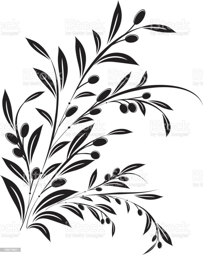 Olive Branch Ornament Vector Illustration vector art illustration