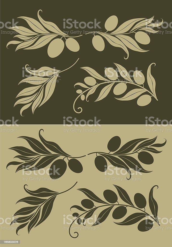 Olive Branch  Silhouette on Background vector art illustration