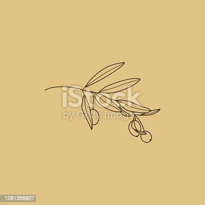 istock Olive Branch with leaves. Outline Botanical leaves In a Modern Minimalist Style. Vector Illustration. 1281355927