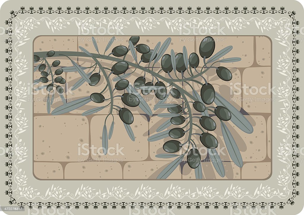 Olive Branch With Shadow On Stone Wall, Floral Frame vector art illustration