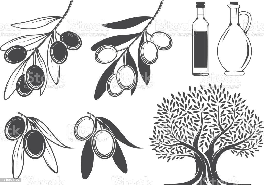 Olive branches, tree and oil olive branches tree and oil - arte vetorial de stock e mais imagens de azeitona royalty-free